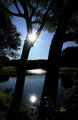 Waterview Photograph - Sun Reflect by Karol Livote