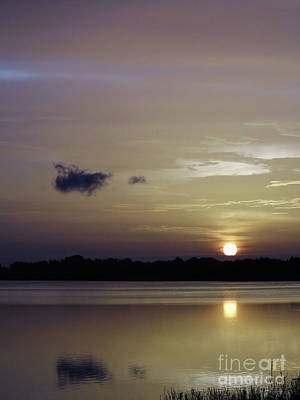 Photograph - Sun Reflection On The Lake by D Hackett