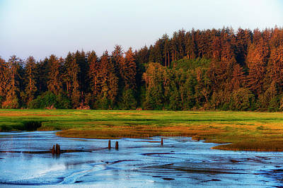 Photograph - Sun Rise Light On Marsh by Dee Browning