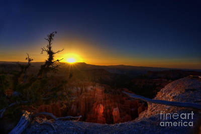 Photograph - Sun Rising In Bryce National Park by Dan Friend