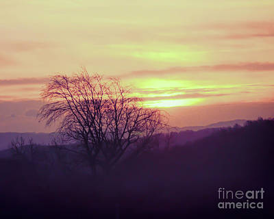 Photograph - Sun Rising by Kerri Farley