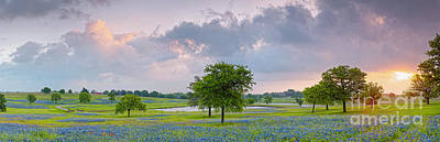 Prairie Sunset Photograph - Sun Rising Over A Bluebonnet Field In Chappel Hill - Washington County Brenham Texas by Silvio Ligutti