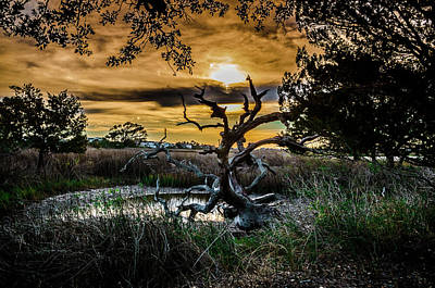 Photograph - Sun Sets Over The Marsh by Gerald Monaco