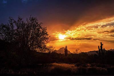 Photograph - Sun Setting On The Sonoran  by Saija Lehtonen