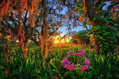 Photograph - Sun Setting Over Coleman Landings Campground In Lake Wales, Florida by Justin Kelefas