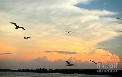 Sun Setting Over The Lake   Print by Yumi Johnson