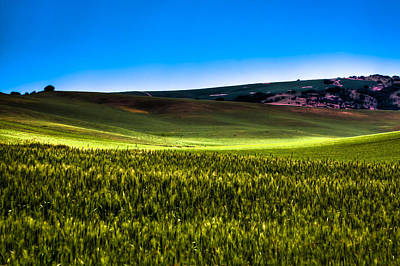 Photograph - Sun Shinning On The Palouse Hills by David Patterson