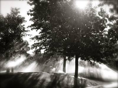 Photograph - Sun Showers by Mark David Gerson