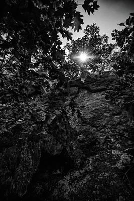 Photograph - Sun Through The Trees by Paul Seymour