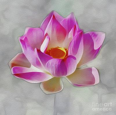 Florals Royalty-Free and Rights-Managed Images - Sun Worship - Beautiful Flower by Sarah Kirk