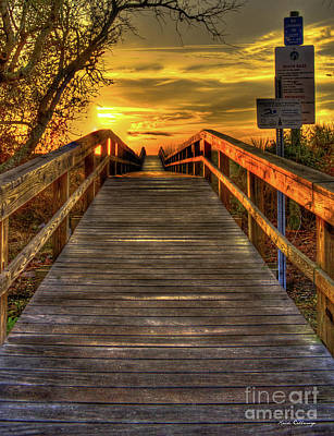 Photograph - Sunbathing Ahead Tybee Island Sunrise Tybee Island Collection Art by Reid Callaway