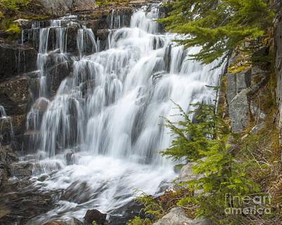 Photograph - Sunbeam Creek II by Chuck Flewelling