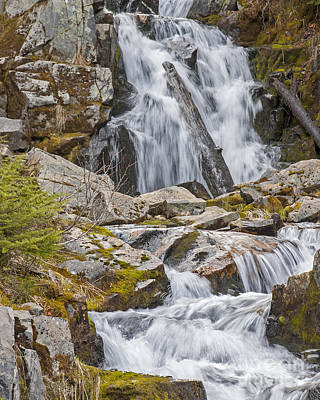 Photograph - Sunbeam Creek IIi by Chuck Flewelling
