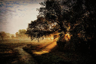 Photograph - Sunbeam Sunrise by Pete Rems