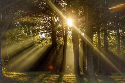 Photograph - Sunbeams IIi by Sumoflam Photography