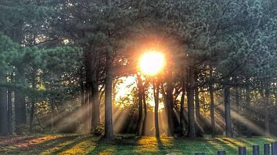 Photograph - Sunbeams Viii by Sumoflam Photography
