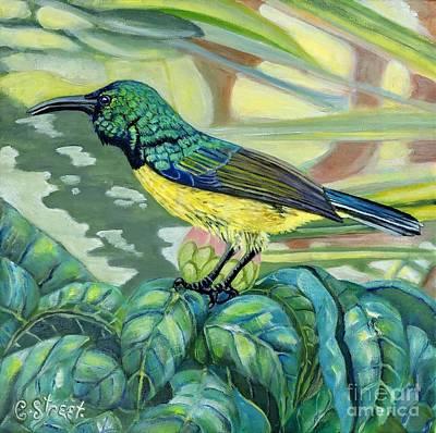 Painting - Sunbird On Camellia by Caroline Street