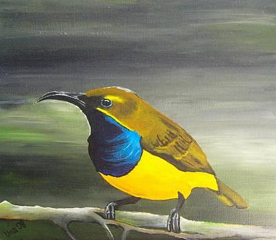 Australian Native Painting - Sunbird by Una  Miller