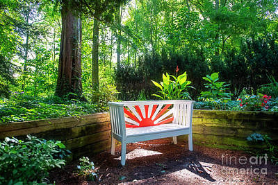 Photograph - Sunburst Bench by David Arment