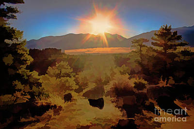 Photograph - Sunburst by Steven Parker