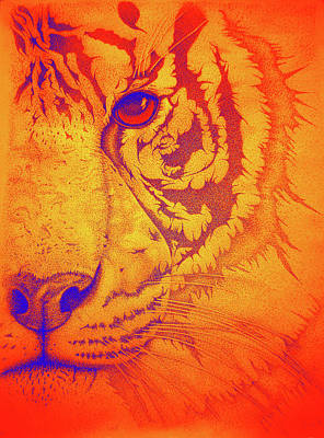 Sunburst Tiger Art Print
