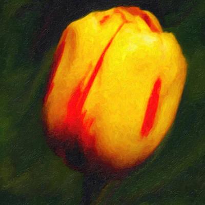 Huisken Digital Art - Sunburst Tulip by Lyle  Huisken