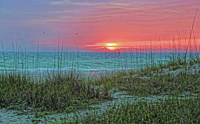 Photograph - Suncoast Sunset by HH Photography of Florida