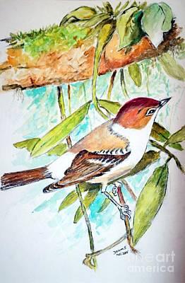Painting - Sunda Flycatcher- Warbler by Jason Sentuf