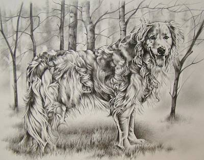 Drawing - Sundance by Michael Lee Summers