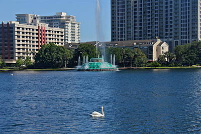 Photograph - Sunday Afternoon In Orlando by Denise Mazzocco