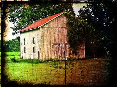 Photograph - Sunday Shed by Michael L Kimble