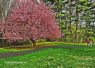 Photograph - Sunday Stroll In Cherry Blossom Time by Tami Quigley