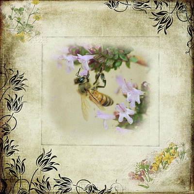 Photograph - Sundaybee by Marilyn Wilson