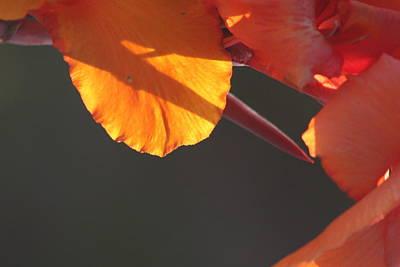 Photograph - Sundial by Brian Boyle