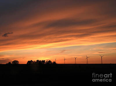 Photograph - Sundown And Silhouettes by Kathy M Krause