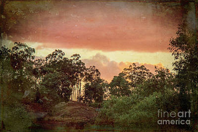 Photograph - Sundown At My Place by Elaine Teague