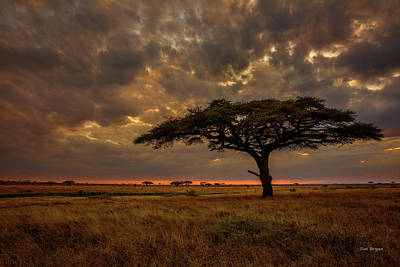Photograph - Sundown, Namiri Plains by Tim Bryan