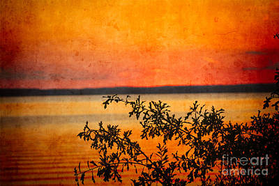 Digital Art - Sundown - Outdoor Beauty #566 by Ella Kaye Dickey