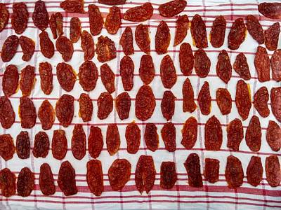 Photograph - Sundried Italian Tomatoes by Sumit Mehndiratta