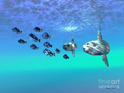 Sunfish Digital Art - Sunfish by Corey Ford