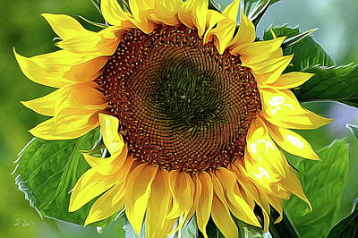 Photograph - Sunflower 10...06.10 Yellow Symbolised Happiness by S Art