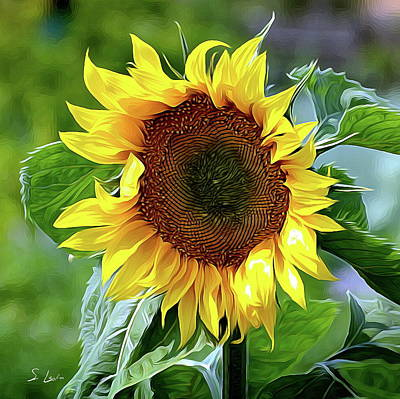 Photograph - Sunflower 10...10.28 Yellow Symbolised Happiness by S Art