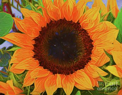 Photograph - Sunflower 12118-3 by Ray Shrewsberry