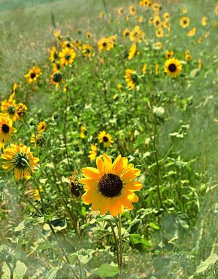 Mixed Media - Sunflower 183 by Kae Cheatham
