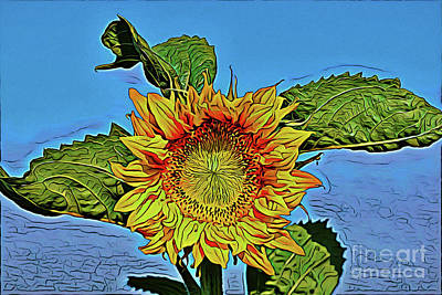 Photograph - Sunflower 18718 by Ray Shrewsberry