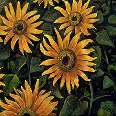Painting - Sunflower 2 by Claudia Goodell