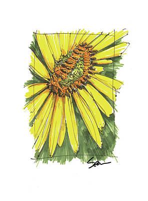 Drawing - Sunflower 2 by Sean McMenemy