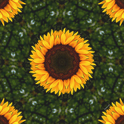 Digital Art - Sunflower 2160k8 by Brian Gryphon