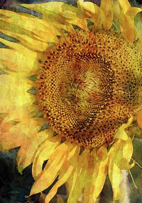 Sunflower 2254 Idp_2 Art Print