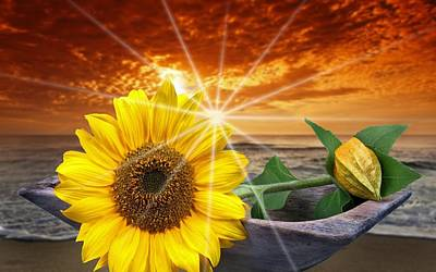 Sunflower 3 Art Print by Manfred Lutzius
